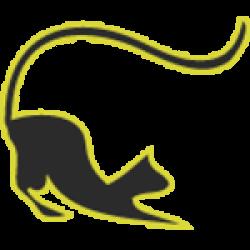 Katzenparadies Hachmann